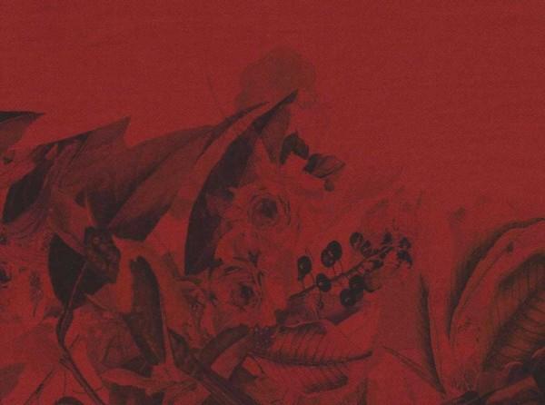 Tissu Kyria rouge nouvelle collection printemps/été 2015
